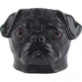 large_black_pug_face_egg_cup_product_image_4f35186211776